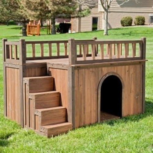 The dog house below is quite beautiful and comfortable for the dogs. Proper  hygiene should