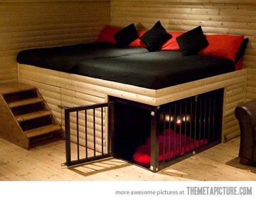 Best Bedding Material For Dog House