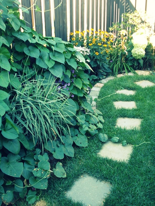 vegetable and flower edging ideas (10)