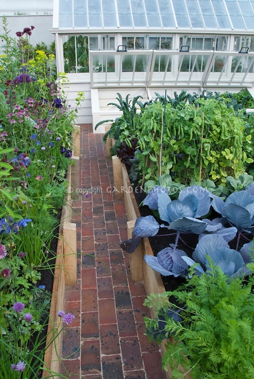 vegetable and flower edging ideas (17)