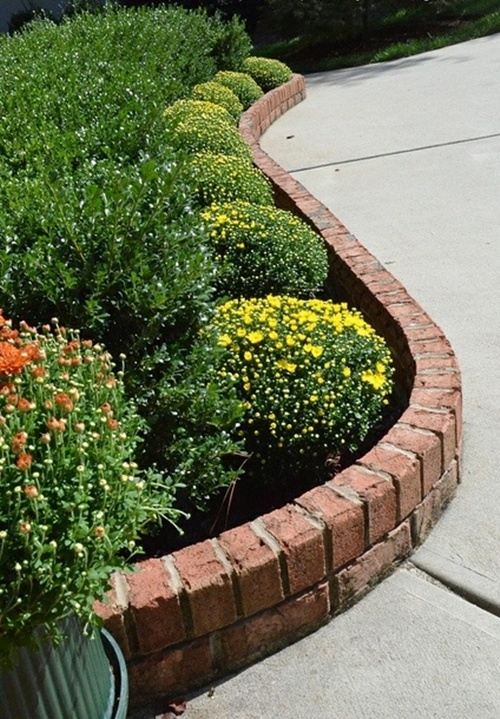 vegetable and flower edging ideas (21)