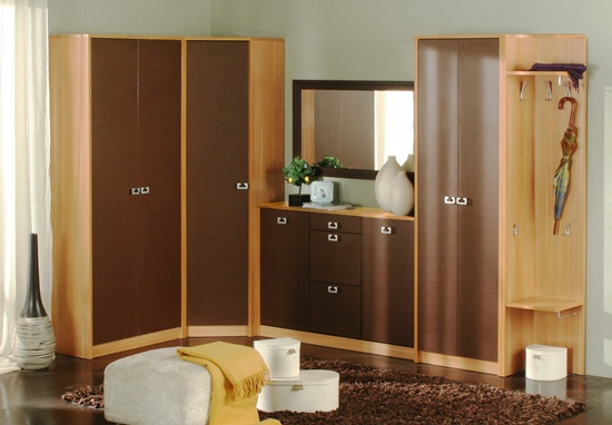 wall wardrobe and almirah (9)