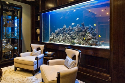 19 Unusual Fish Tank Ideas The Ultimate Stress Killer Wisma Home
