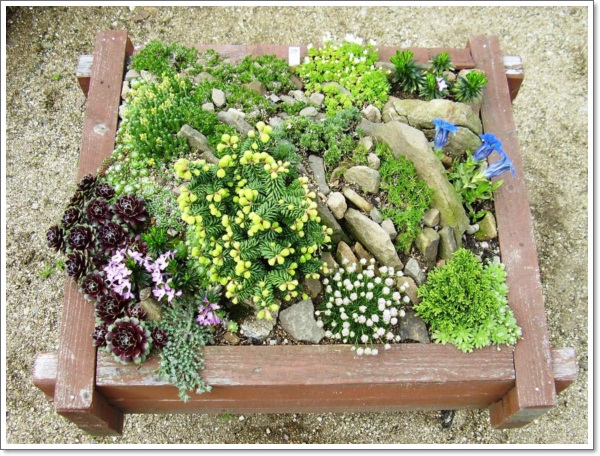 30 beautiful rock garden design ideas for Small rock garden designs