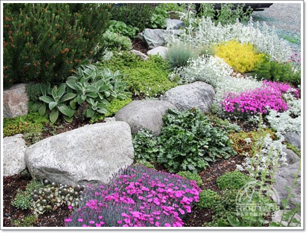 30 beautiful rock garden design ideas for Rock garden bed ideas