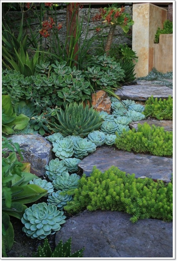 Rock Gardens Ideas rock garden ideas home Rock Garden Ideas Rock Garden Ideas 5