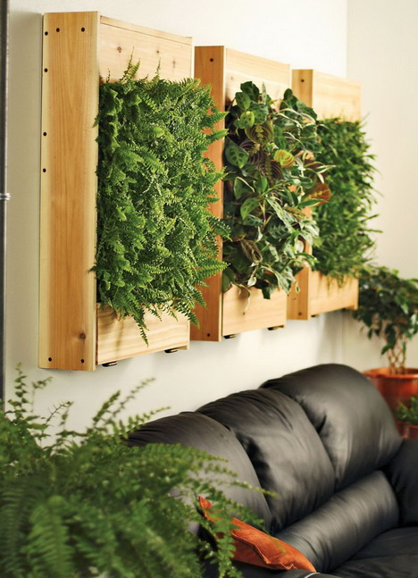Spice up your space 20 living room wall decor ideas for Indoor greenery ideas